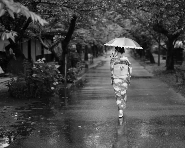 雨 着物 後ろ姿
